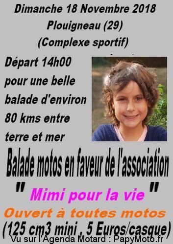 Balade - Dimanche  18 novembre  2018 - Plouigneau (29) Balade29