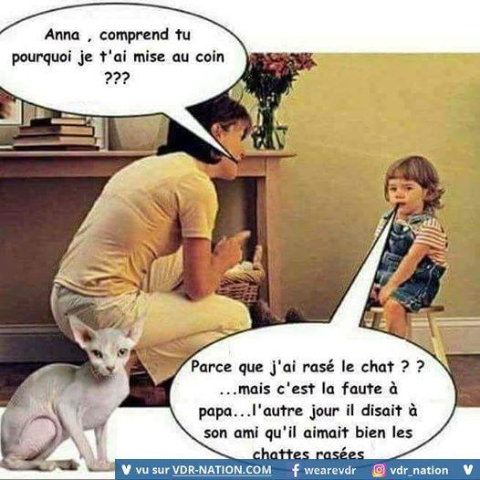 HUMOUR - Savoir écouter et comprendre... - Page 17 C823f510