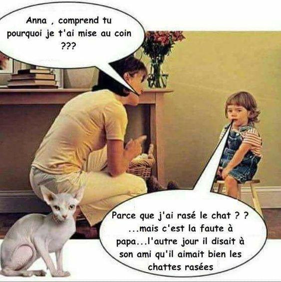 HUMOUR - Savoir écouter et comprendre... - Page 19 F0031310