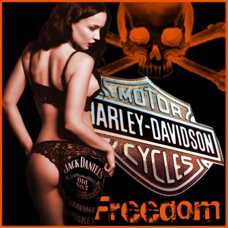 anniversaire  29 Mars  2019 Harley15