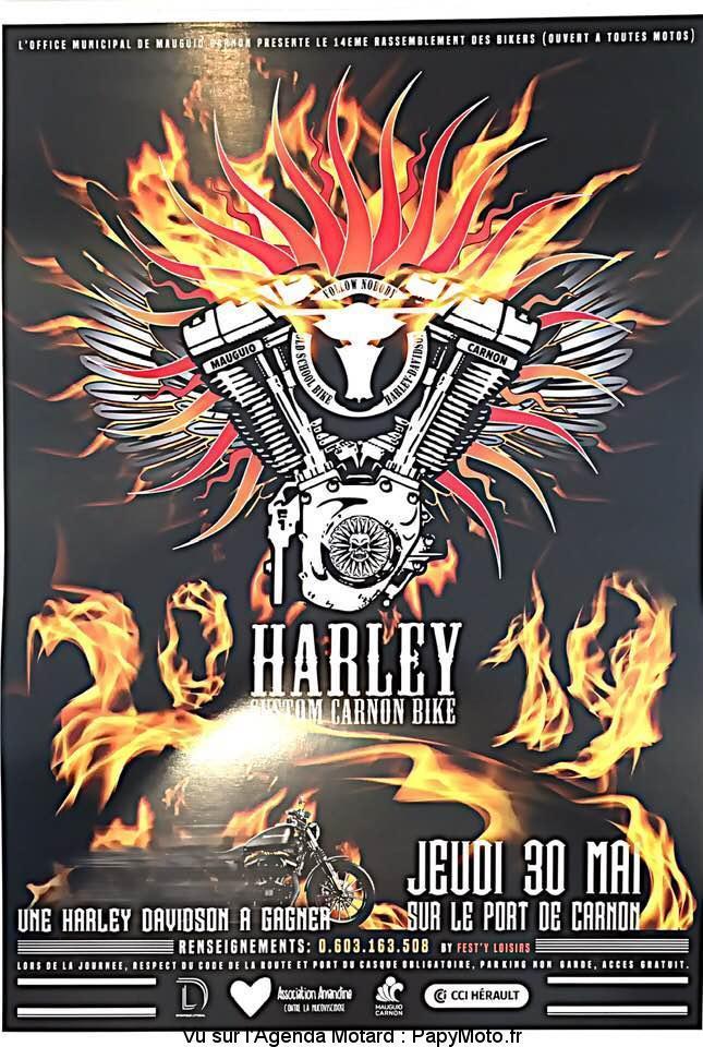 MANIFESTATION - Rassemblement - Jeudi 30 Mai 2019 - Carnon (34) Harley16
