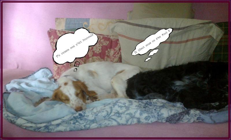 Kookie dans sa famille . 03072010