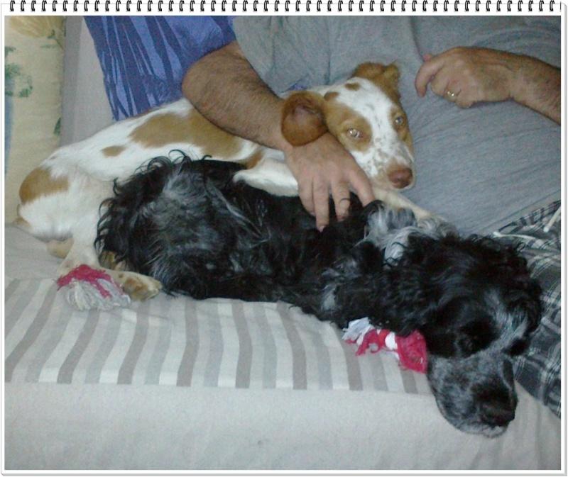 Kookie dans sa famille . - Page 3 24072010