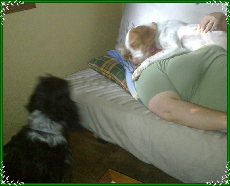 Kookie dans sa famille . - Page 3 26072010