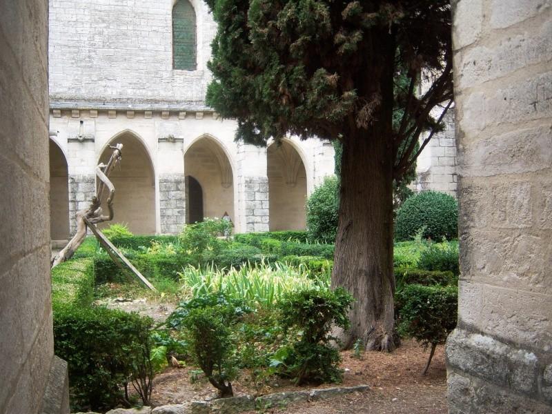 La Chartreuse du Val de Bénédiction 100_2711