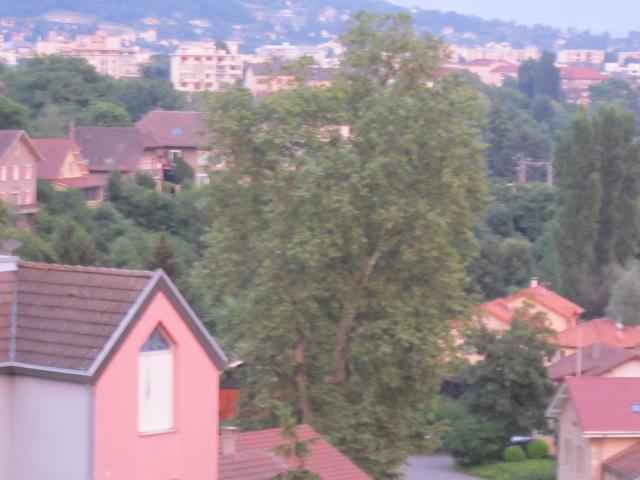 décors naturel(arbres) Mes_im30