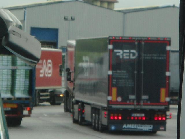 Red Line , Redant   (Boezinge) - Page 2 Dsc01123