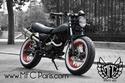 250 cc de honte News_110