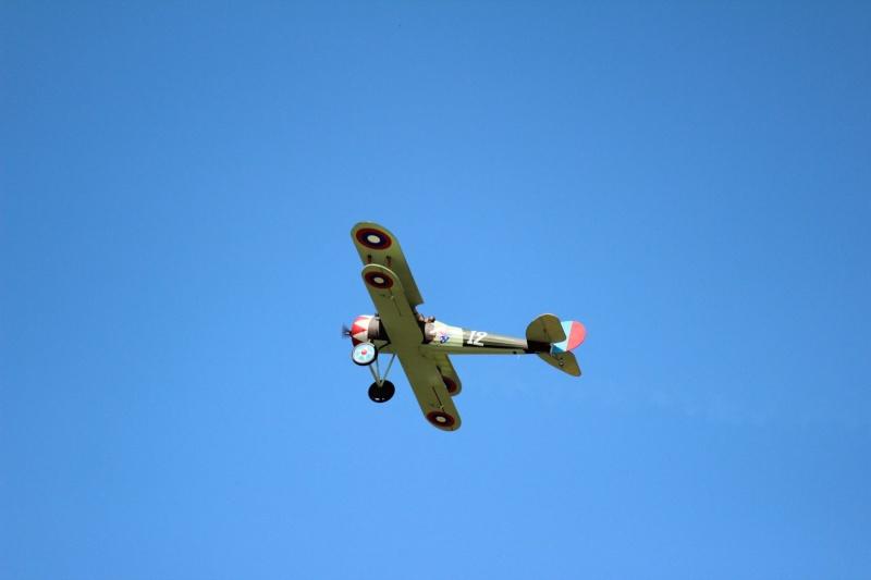 Alain Guernion Nieuport 28c Img_2930