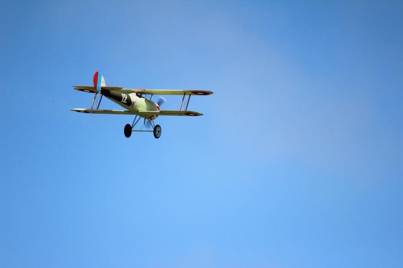 Alain Guernion Nieuport 28c Img_2931