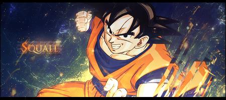 [Galerie] de Squall Goku310
