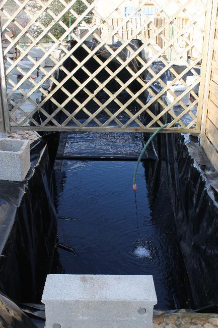 autre bassin jardin 510