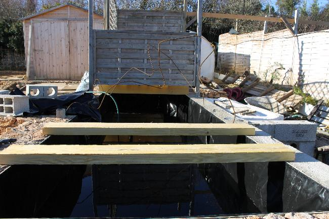 autre bassin jardin 710