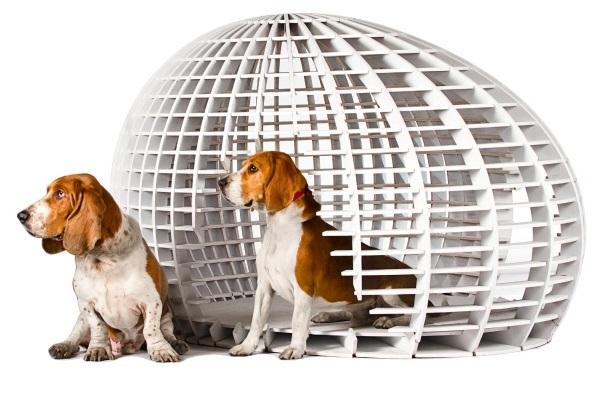 El arquitecto diseñador de casas… ¡Para perros! 2ahori13
