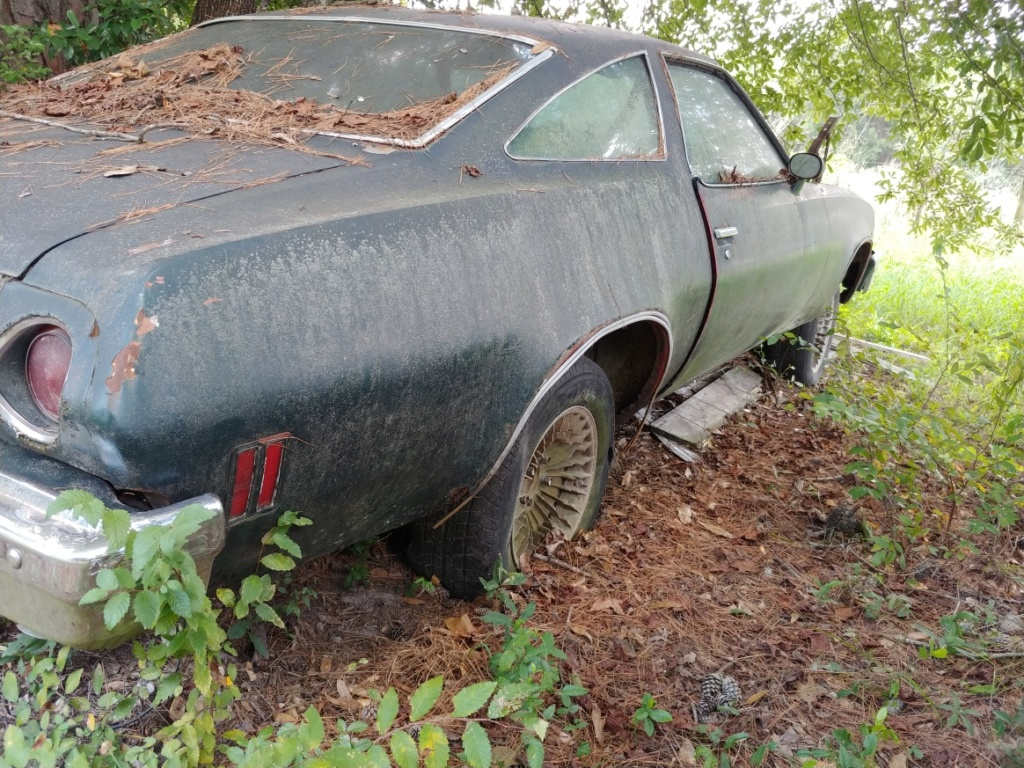 G3 Junkyard Finds - East Texas 20180912