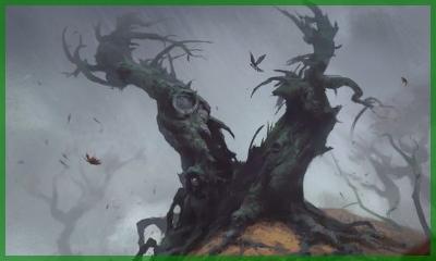 Description des lieux et monstres présents Bosque10