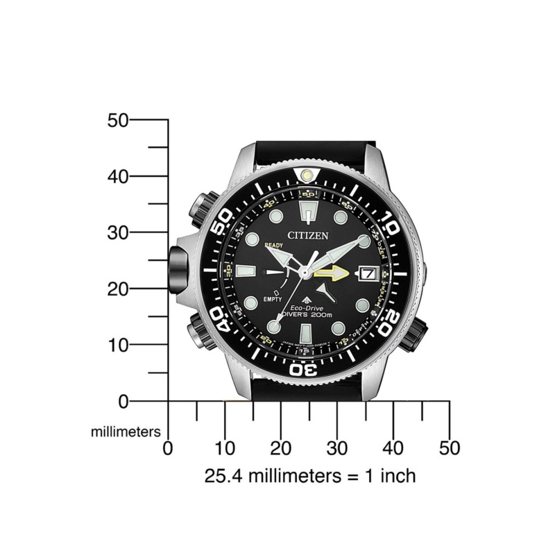 Citizen BN 2036-14E la nouvelle aqualand 210