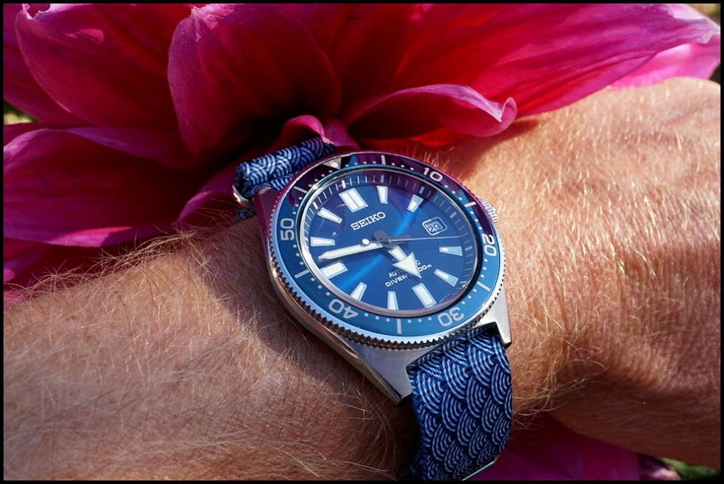 Votre montre du jour - Page 25 Rtdsc020