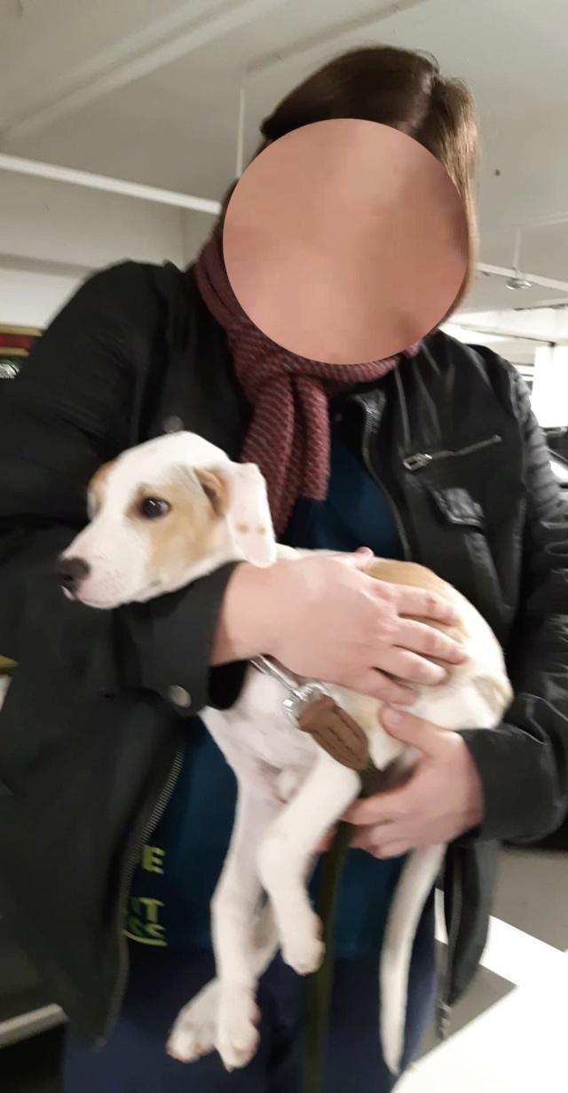HALGREEN né le 10/10/2018 - F - Adopté en Belgique Bzobzo22