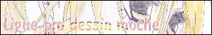 Ligues : bannières & icônes Bfsb_b10