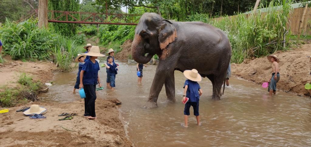 Thaïlande Août 2018 Img_2061