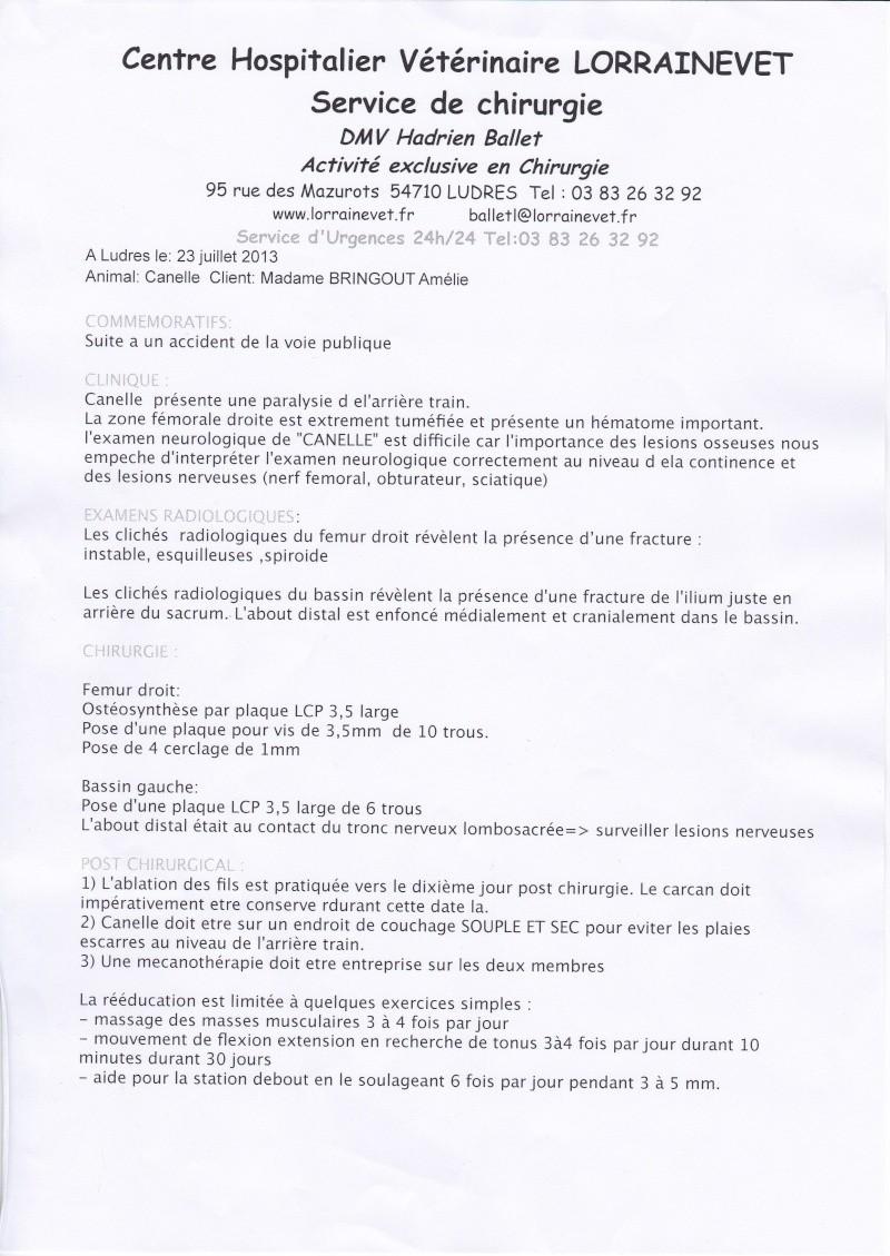 1 CLIC PAR JOUR POUR CANELLE  Img_2010