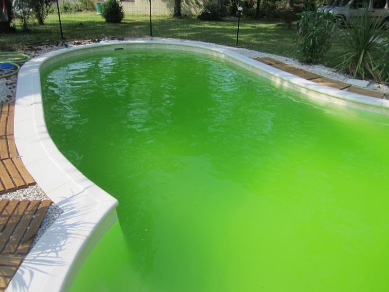 Probléme d'algues. Img_0212