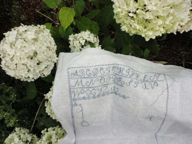 SAL Thryphéna Sherrell 1841 d'Histoire de Lin Prochaine photo le 20 Aoüt - Page 5 Dsc03742