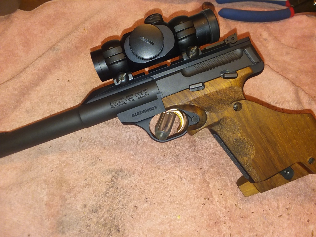 Browning Buck Mark Field Target vs. Ruger Mk IV Target? 20190331