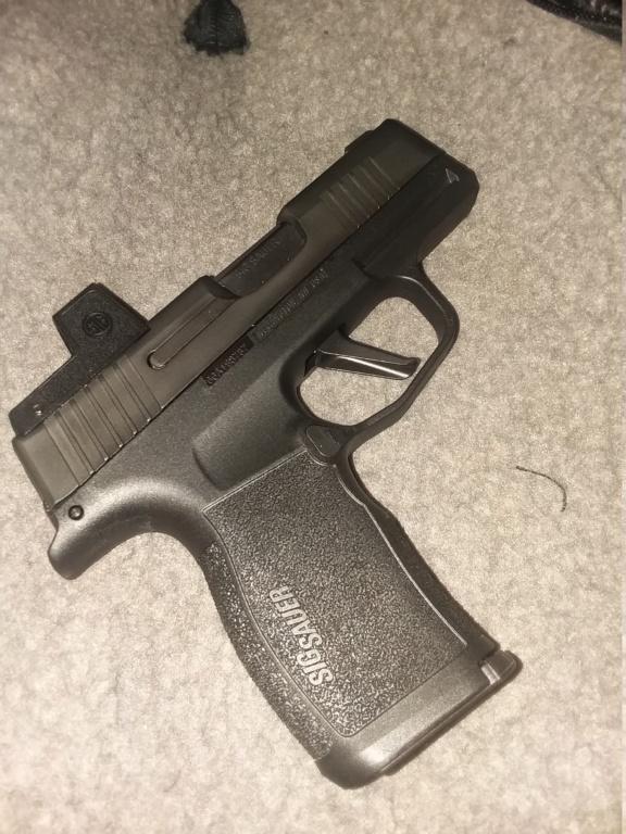 Pistols designed for the wee folk.  20210611