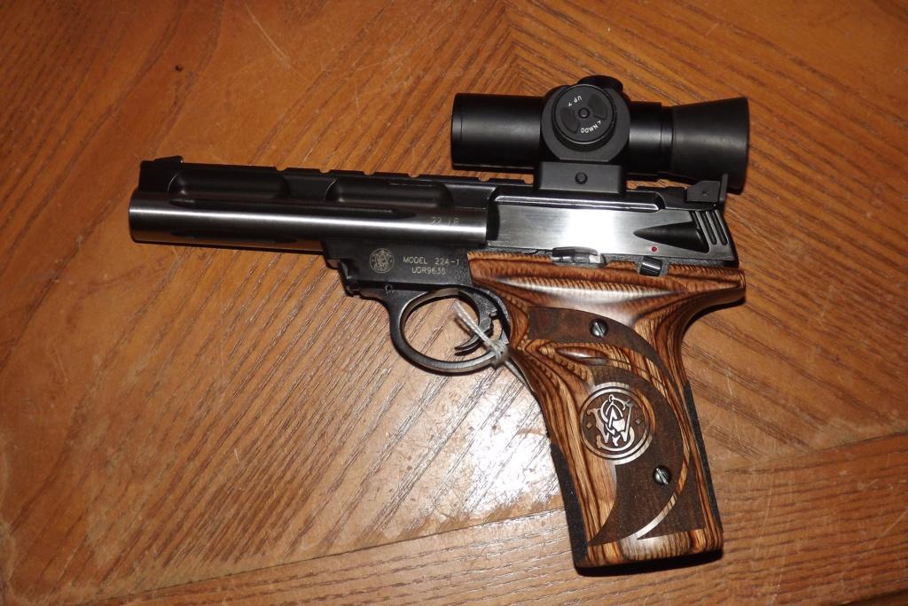 WTB Smith & Wesson SW 22 Dscf0525