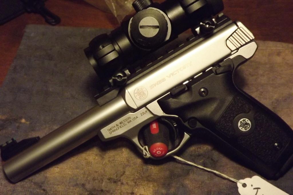 WTB Smith & Wesson SW 22 Dscf0772