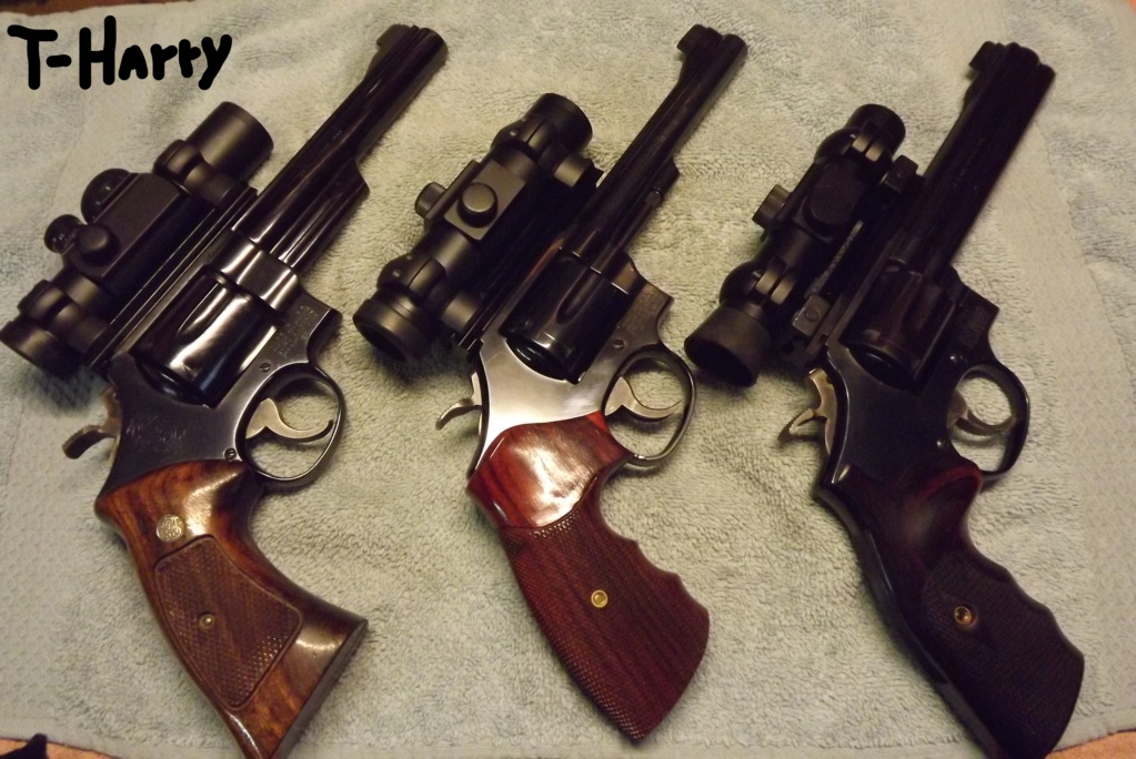 Show Me Your Bullseye Pistols - Page 13 Dscf1413