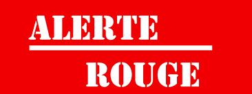 CAGNOTTE FRAIS VETERINAIRE POUR LES LOULOUS DU REFUGE - Page 10 38612116