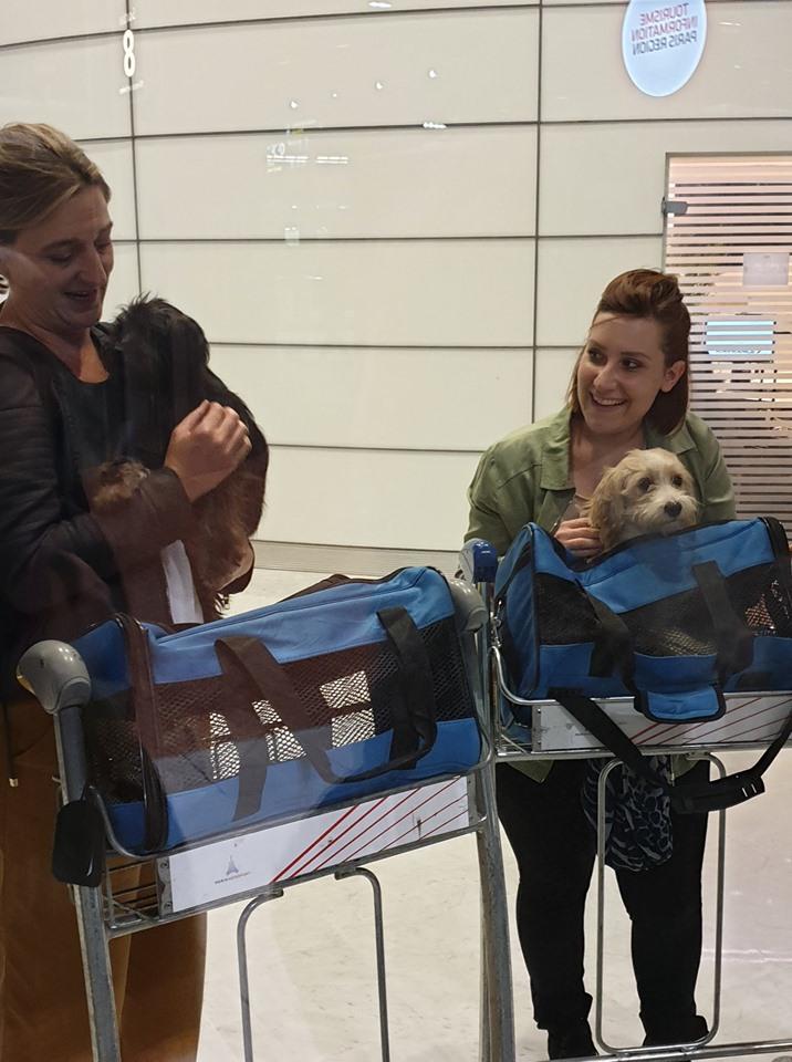 TINY - Petite maman née en 2017(FA dept45), avec son bébé (mâle) Milky -R-SC-SOS- 71116413