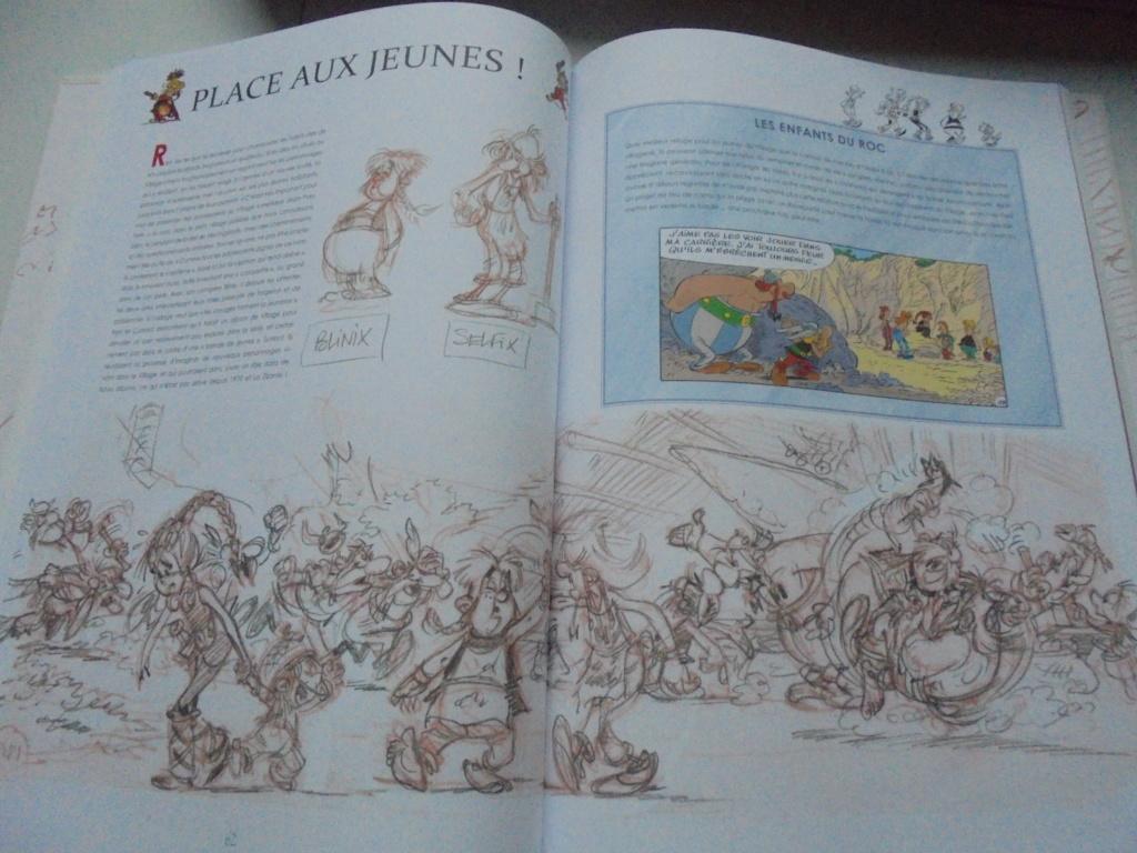 asterix mais achat - Page 21 Dsc03859