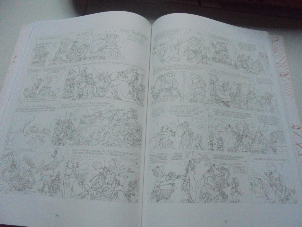 asterix mais achat - Page 21 Dsc03863