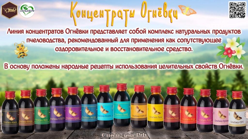 Концентраты огневки Ognevk10