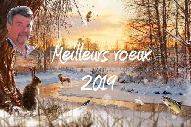 2019 -  Meilleurs voeux 2019 Dscn7810