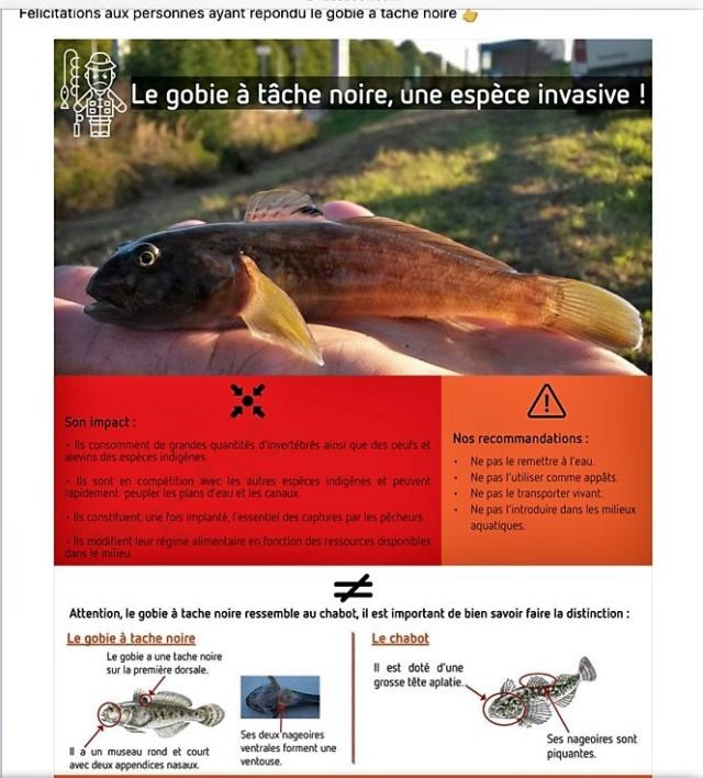 Canal de la Deule - Page 2 Fd1b6c10