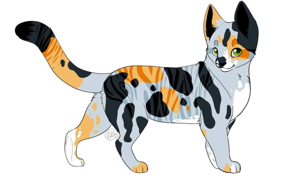 WarriorCats - Schmetterlingseffekt Adopt_10