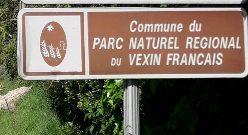 Banane dans le Vexin 2020 - dimanche 14 juin - Page 3 Thumb267