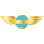 Pilot Experience Sim Forum
