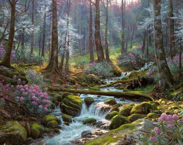 L'eau paisible des ruisseaux et petites rivières  - Page 2 0_5e4410