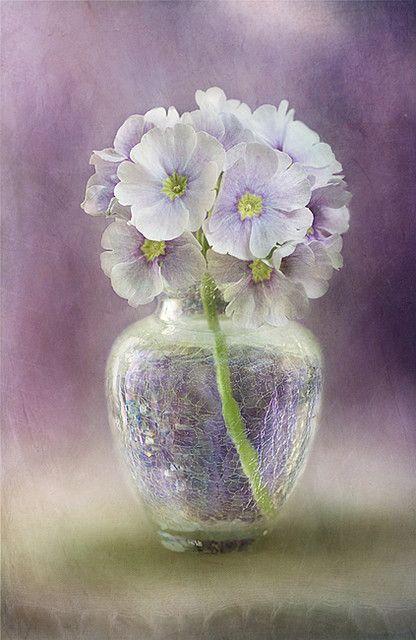 Bouquet dans un vase, une corbeille, une coupe, une poterie  - Page 2 369f8a10