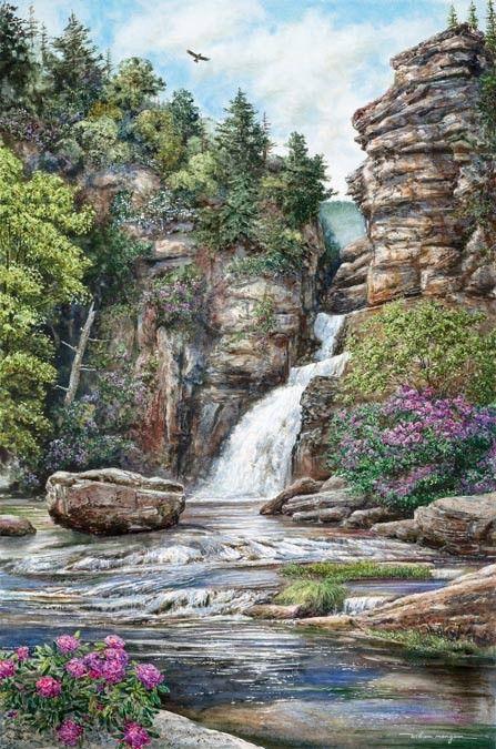 L'eau paisible des ruisseaux et petites rivières  5fff8a10