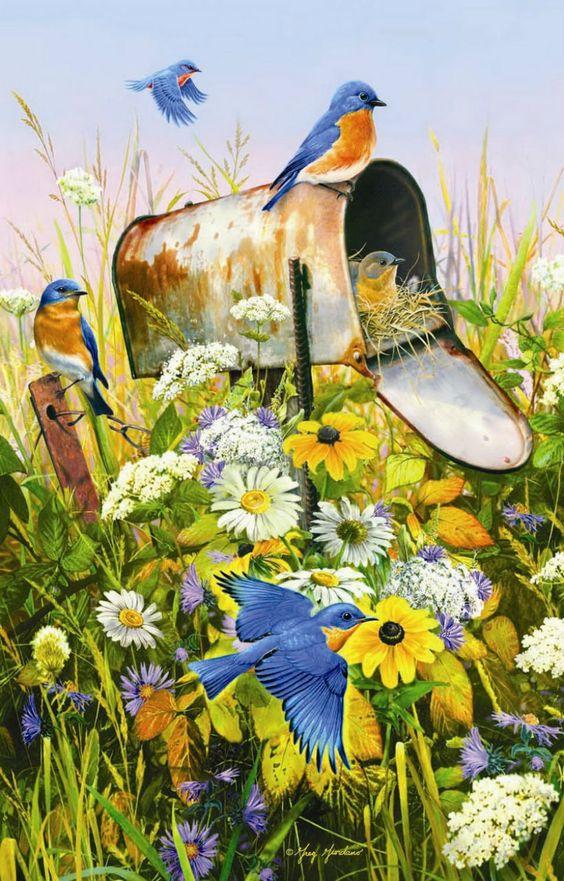Fleurs printanières  671a5610