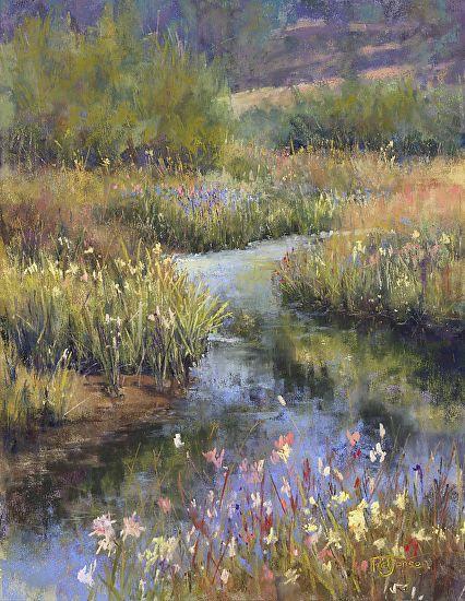 L'eau paisible des ruisseaux et petites rivières  - Page 2 B2f20910