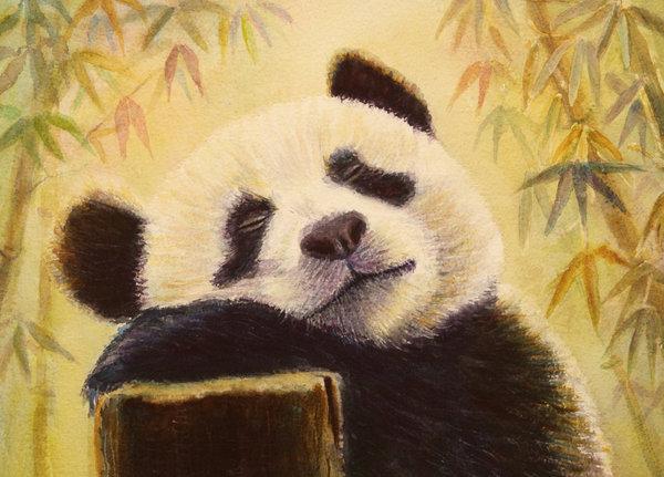 Rêver est une liberté pour tous ...  - Page 2 Panda_10