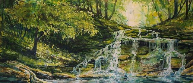 L'eau paisible des ruisseaux et petites rivières  Waterf10
